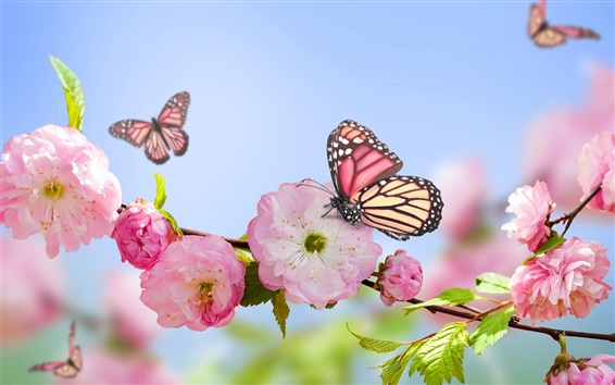 Wallpaper Spring, pink flowers, butterflies, blue sky