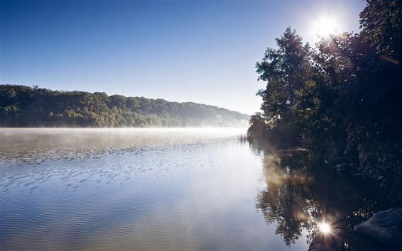 Fond d'écran Lever du soleil, forêt, rivière, brume, matin