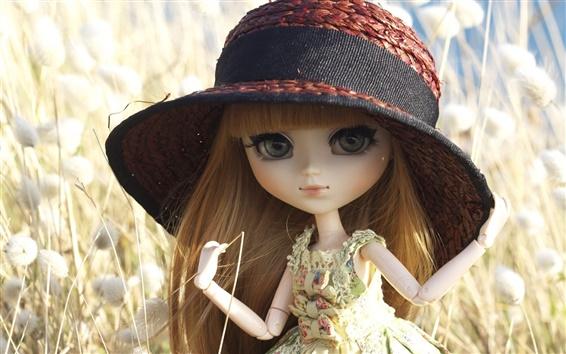 壁紙 おもちゃの人形、帽子、草