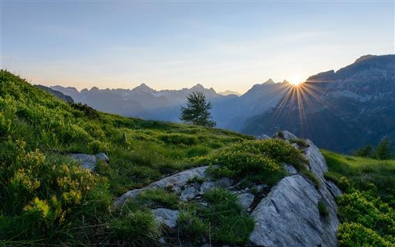 Обои Альпы, Швейцария, горы, рассвет, восход