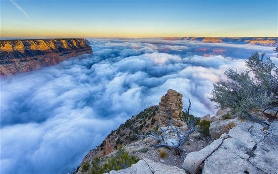 Fondos de pantalla Arizona, Gran Cañón, niebla, mañana, salida del sol, las nubes