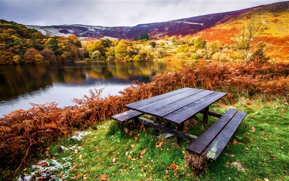 Wallpaper Beautiful landscape, autumn, river, trees, table, benches, grass, leaves
