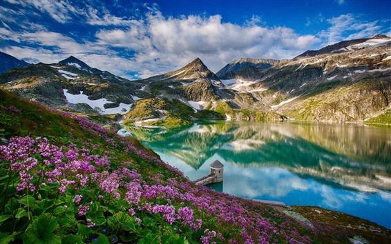 Wallpaper Beautiful spring, mountains, lake, flowers, water reflection, tower