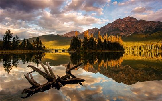 Wallpaper Canada, Jasper National Park, Pyramid Lake, trees, mountain, morning light