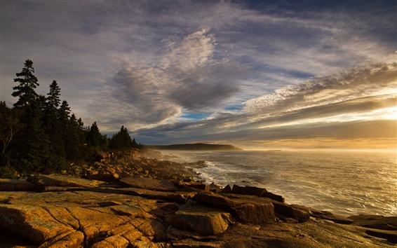 Wallpaper Coast, forest, rocks, sea, waves, sky, clouds, dusk