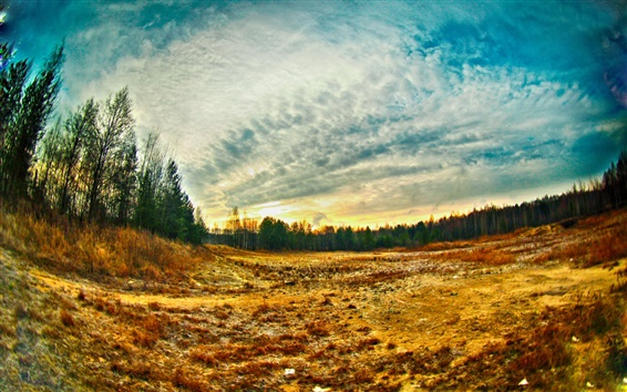 Wallpaper Fisheye landscape, summer, trees, grass, clouds