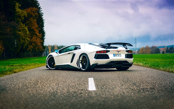 Wallpaper Lamborghini Aventador white supercar back view