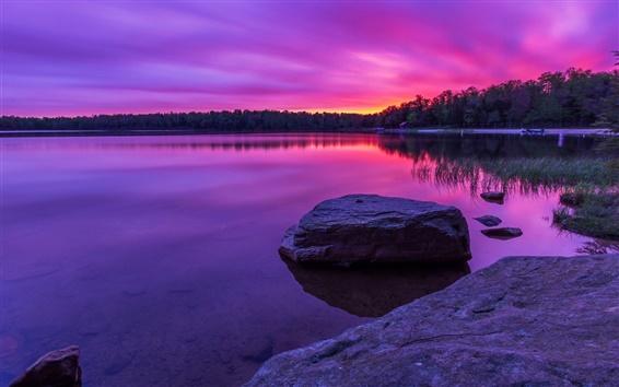 Papéis de Parede Por do sol roxo, floresta, lago, pedras
