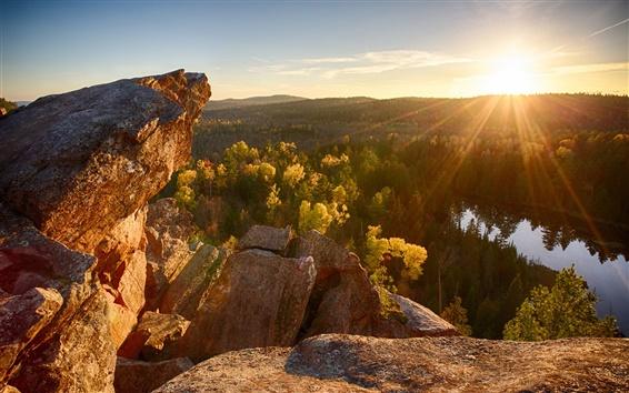 Обои Скалы, лес, река, утро, лучи солнца