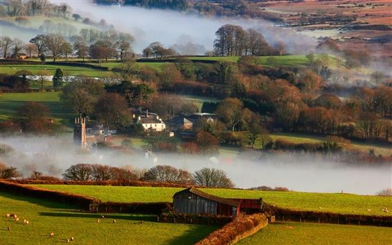 Wallpaper Britain, countryside, winter, fog, morning, houses