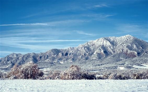 Обои Колорадо пейзаж, горы, снег, деревья