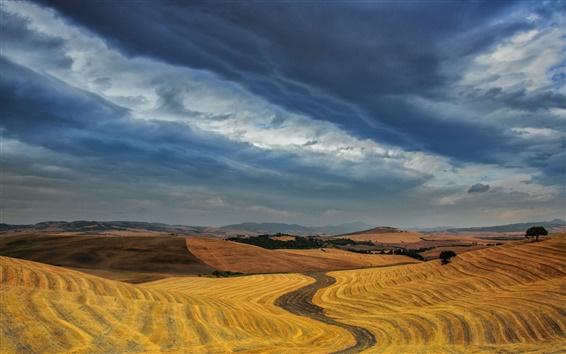 壁紙 夕暮れ、空、雲、ドライフィールド