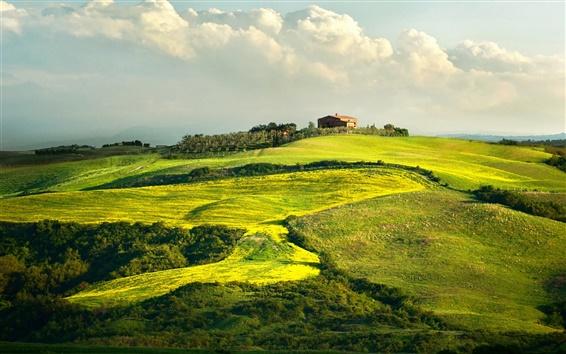 Wallpaper Italy, Tuscany, house, green, summer