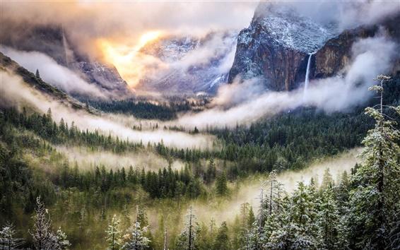 Fond d'écran Matin, montagnes, brouillard, forêt, nature, paysage,