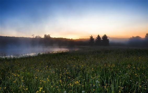 Fond d'écran Matin paysages, champs, rivière, brume