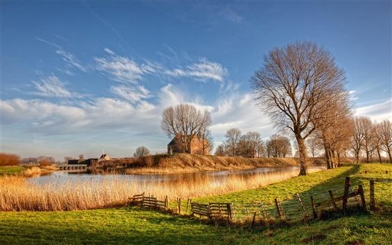 Обои Нидерланды, река, солнце, деревья, трава, дом