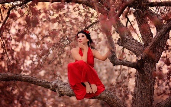 Wallpaper Red dress girl on the tree
