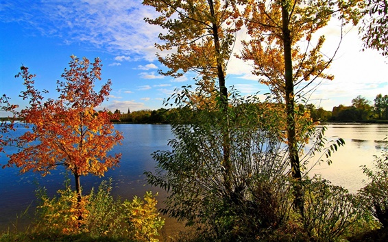 Wallpaper Russia, Yaroslavl, river, trees, sky, clouds, autumn
