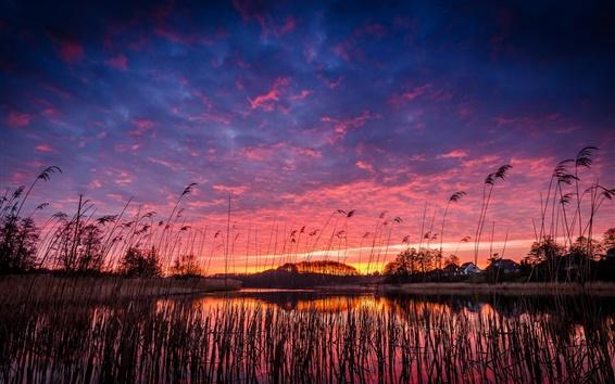Fond d'écran Belle soirée, lac, village, roseaux, arbres, coucher du soleil, réflexion de l'eau
