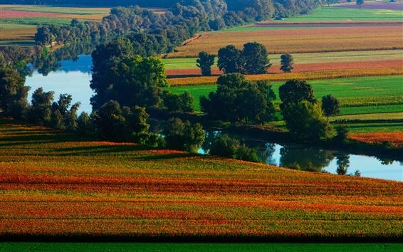 Fond d'écran Belle nature, été, rivière, champs, coloré