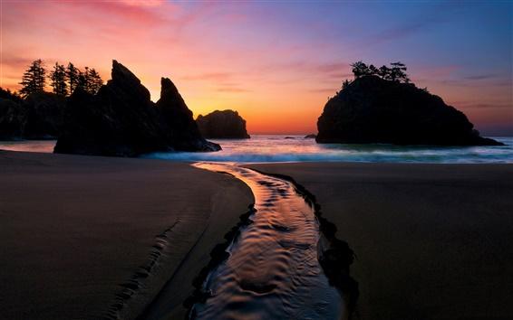 Обои Побережье, пляж, море, закат, ночь, волны, скалы, деревья, закат