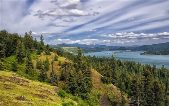 Wallpaper Coeur d'Alene Lake, forest, trees, mountains, clouds