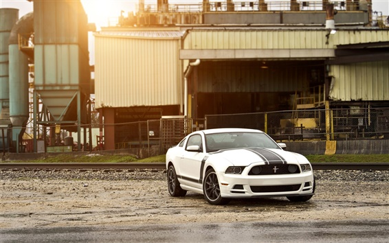 Fondos de pantalla Ford Mustang Boss 302 del coche negro blanco