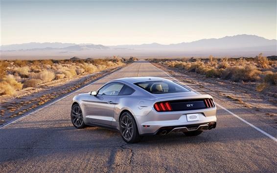 Обои Ford Mustang серебро мышцы автомобиль вид сзади