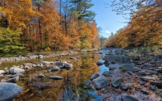 Обои Лес, река, скалы, осень