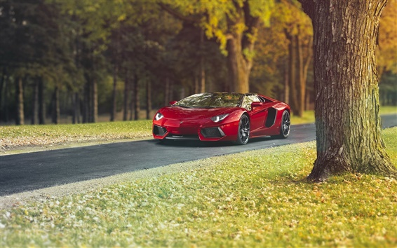 Wallpaper Lamborghini Aventador LP700-4 red supercar, autumn, trees