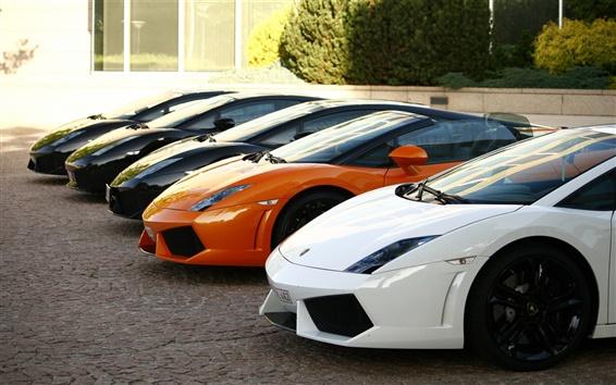 Обои Многие Lamborghini Gallardo суперкар, вид спереди