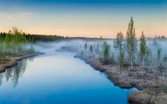 Fondos de pantalla Niebla que se levanta, salida del sol, río, árboles