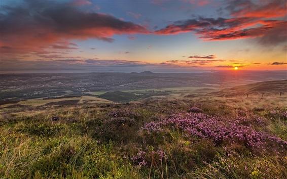 Wallpaper Morning hills, field, flowers, coast, sunrise, dawn