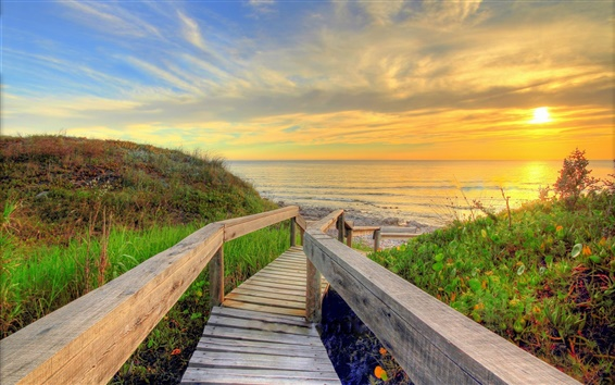 Wallpaper Sea, beach, wooden bridge, sun, morning