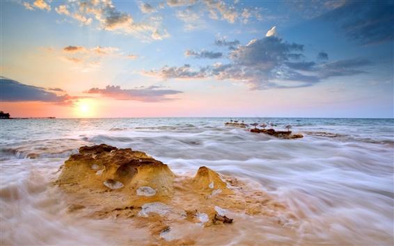 배경 화면 일몰, 바다, 구름, 새, 자연 풍경