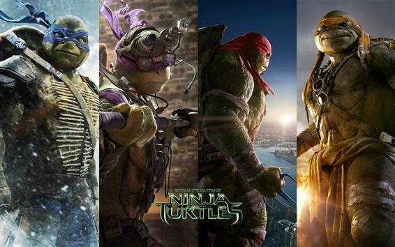 Wallpaper Teenage Mutant Ninja Turtles 2014
