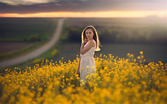 Wallpaper White dress girl, golden canola flowers