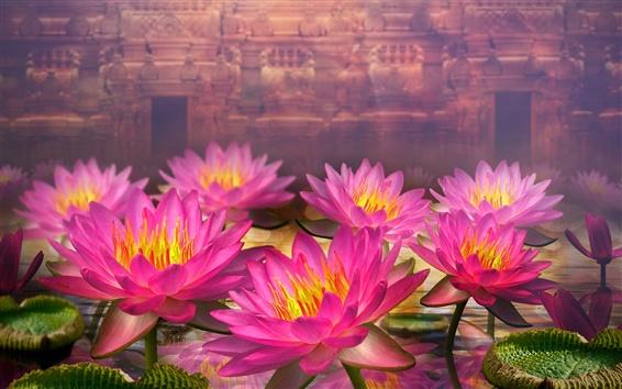 Wallpaper 3D flowers, pink water lilies