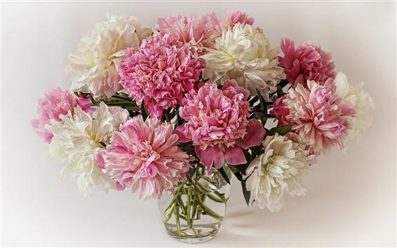 Обои Букет пионов, белые розовые цветы