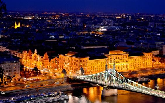 壁紙 ブダペスト、ハンガリー、自由の橋、川、ドナウ、ライト、建物、夜