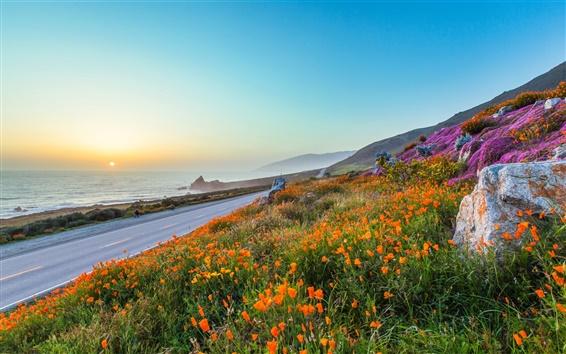 Обои Вечер, закат, дорога, оранжевые цветы, маки, скалы, море, горы