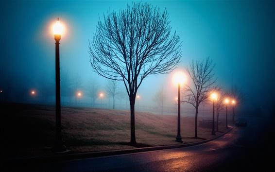壁紙 霧、都市、通り、公園、ライト、夜