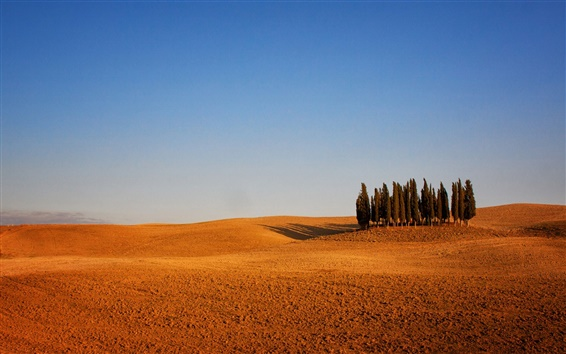 Wallpaper Italy, Tuscany, arable land, trees, sky, dry weather