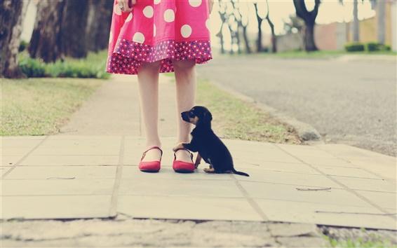 Wallpaper Little girl legs, black puppy