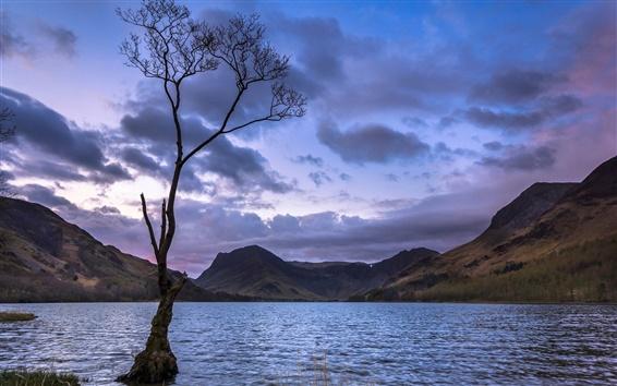 Fondos de pantalla Árbol solitario, montañas, lagos, puesta de sol