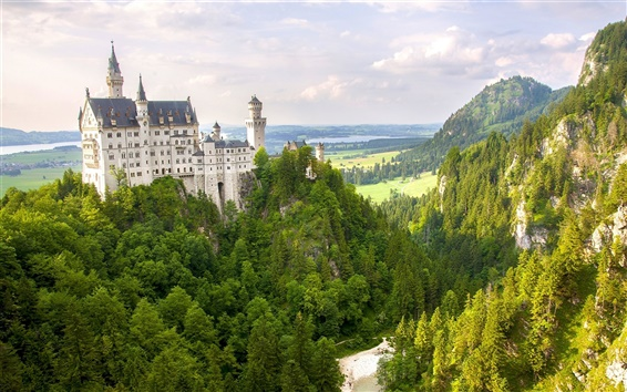 Wallpaper Neuschwanstein Castle, Germany, mountain, forest, trees