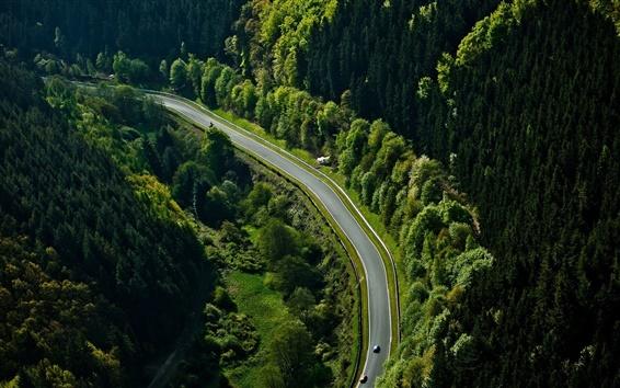 壁紙 ニュルブルクリンク、道路、森、車