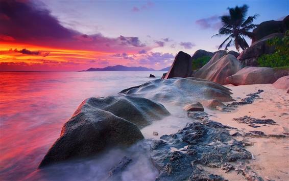 Wallpaper Seychelles, La Digue Island, Indian Ocean, sea, stones, palm trees, sunset