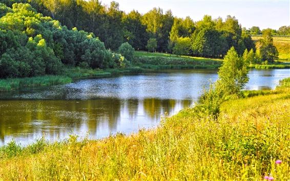 Wallpaper Summer, river, grass, trees