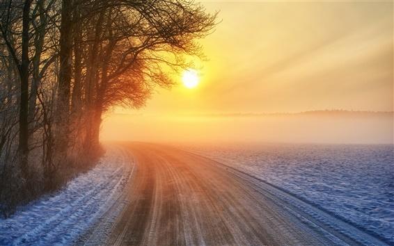 Fond d'écran Coucher de soleil, route, hiver, les arbres, le soleil chaud